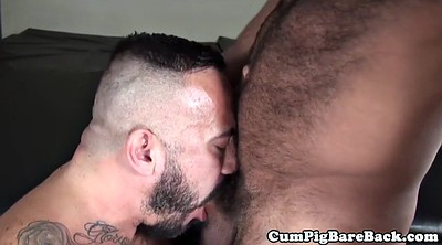 Bears, Gay bear, Mature hairy masturbation, Mature gay, Gay bareback