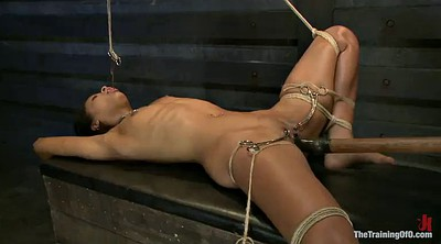 Bondage, Tied, Tied up