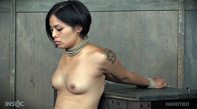 Short hair, Short, Hairy babe, Shorts, Asian tied, Asian bdsm