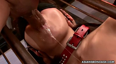 Japanese bdsm, Bondage, Asian bondage, Asian bdsm, Japanese squirt, Japanese orgasm