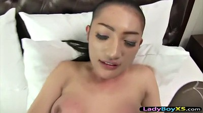 Pantyhose fuck, Black pantyhose, Asian pantyhose, Shemale pantyhose, Shemale fucks shemale, Ladyboy fuck