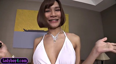 Ladyboy, Asian boobs, Erection, Asian big boobs