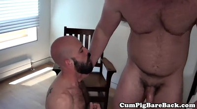 Mature big ass, Chubby anal, Big ass anal, Bear gay