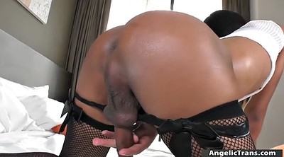Asian, Thai anal, Asshole solo, Shemales, Thai shemale, Anal asian