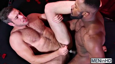 Muscle, Lover, Alex, Gay muscle, Gay interracial