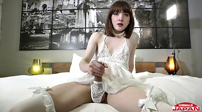 Ladyboy solo, Cute shemale