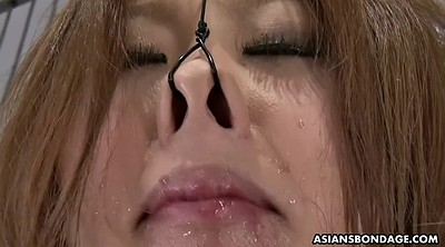Japanese bondage, Gagging, Asian bondage, Bondage japanese, Wine