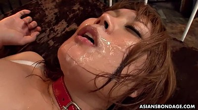 Japanese bdsm, Japanese milf, Japanese gangbang, Japanese big tits, Japanese bukkake, Asian bdsm