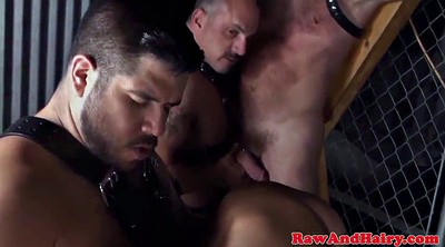 Bear, Leather, Trio mature, Mature gay