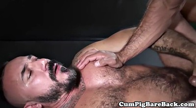 Bear, Mature gay, Gay bears, Mature blowjob, Bears