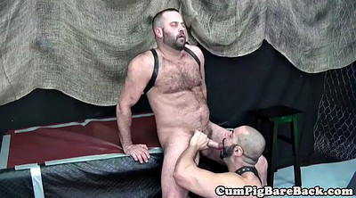 Bear, Gay bear, Mature masturbate, Masturbating close up