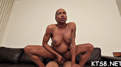 Tranny fucked, Shemale fuck, Shemale big ass
