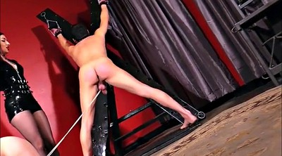 Cbt, Caning, Whip, Femdom whipping