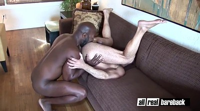 Ebony hairy, Black hairy