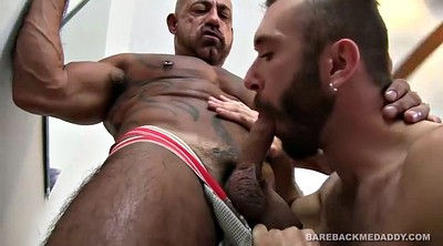 Daddy, Old daddy, Licking, Breeding