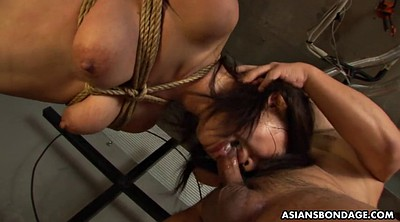 Bondage, Rope, Asian bdsm, Suck
