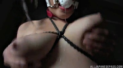 Couple, Asian bdsm