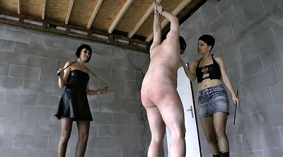 Whipping, Whip, Whipped, Dominant