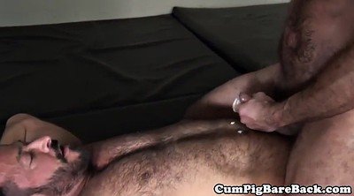 Bear, Mature big ass