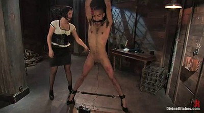 Whip, Whipping femdom