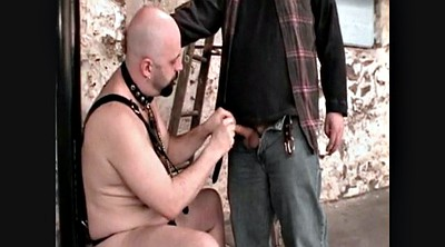 Italian, Forest, Master, Bear gay, Bbw hd