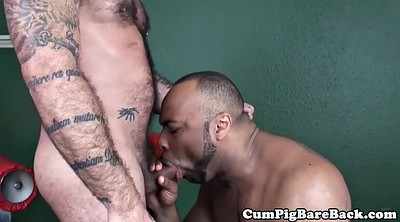 Bear, Deep throat, Hairy mature