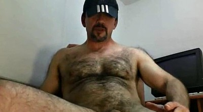 Bear, Bears, Daddy bear, Hairy daddy