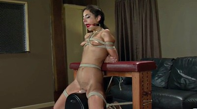 Force, Forced, Sybian