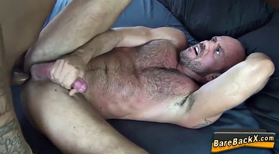 Bear, Big cumshot, Gay bear