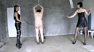 Femdom, Whipping, Whip, Whipped