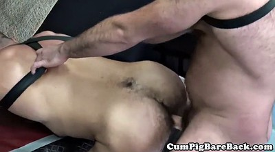 Bear, Bears, Mature gay, Bear gay, Mature creampie, Gay ass