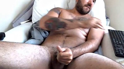 Turkish, Muscle bear