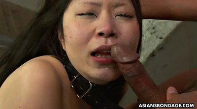 Piss, Bdsm asian, Creampie, Japanese piss, Bdsm japanese, Asian pissing