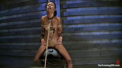 Tied up, Tied, Sybian, Tie up