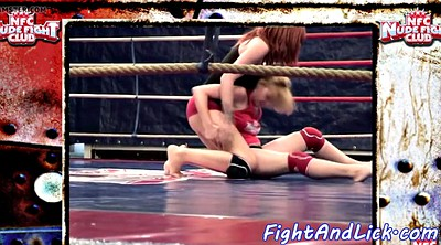Wrestling, Fight, Fighting, Cat