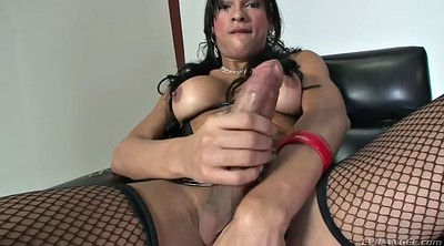 Bbw solo, Tranny, Big ass solo, Shemale cumshot