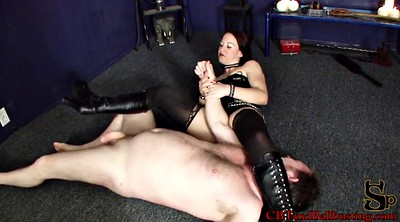 Cbt, Shoes, Cat, Cat fight