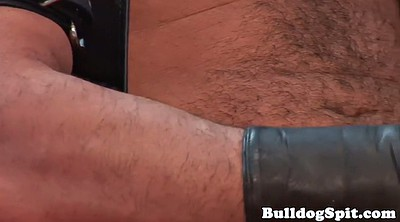 Gay, Leather, Hairy solo