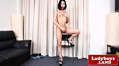 Asian ladyboy, Shemales